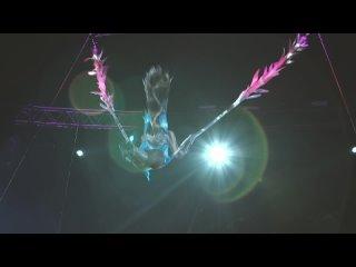 Видео от Сочинский цирк || Официальная группа