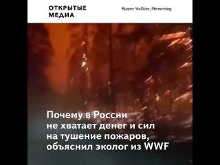 Эколог объяснил, почему в России не хватает денег и сил на тушение пожаров
