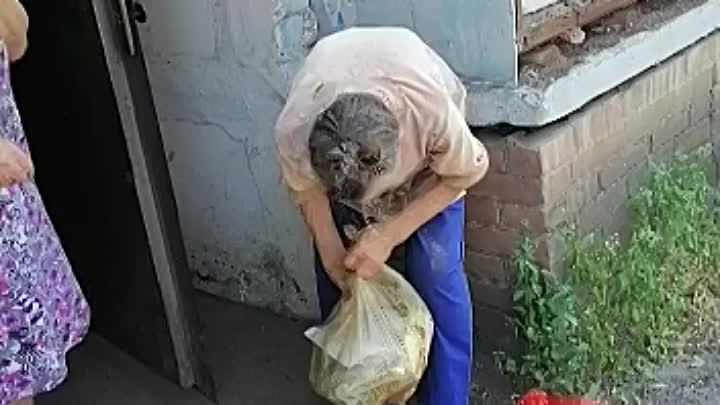 Видео от Реабилитационный Центр Бездомных живот г.Шахты