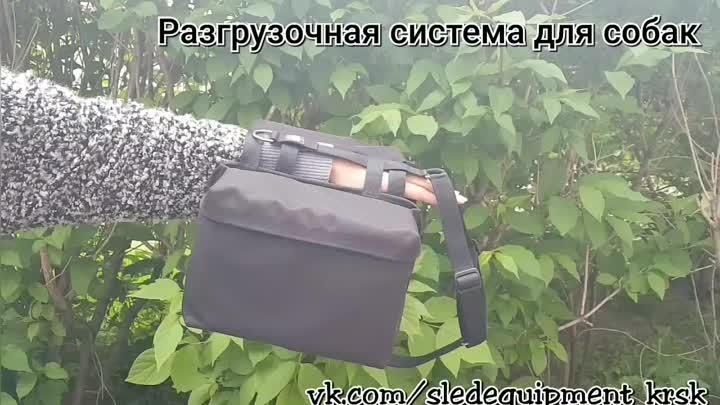 PhotoGrid_1622282885264_1.mp4