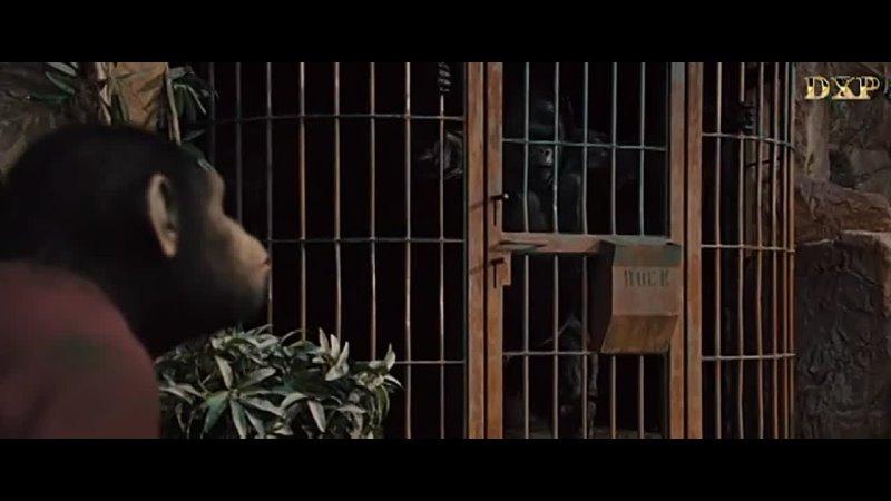 Восстание планеты обезьян 2011 США субтитры