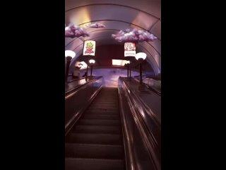 Видео от Питер/Санкт-Петербург❤