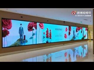 Xiao Zhan X ROSEONLY for Qixi in Beijing