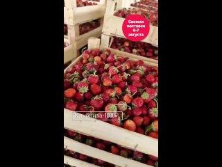 Видео от Дикороса-Эко-Продукта Ягоды-Грибы