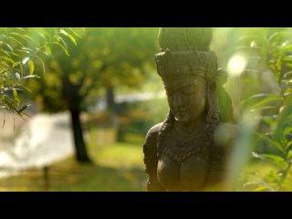 Видео от Homo Universe