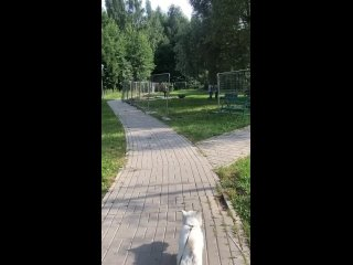 Ремонтируют площадку на Соловьином