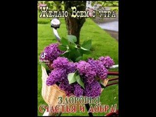 Видео от Елены Зайковой