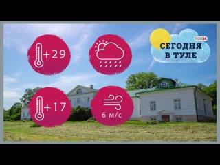 В Тульской области жара и дождь ожидаются 29 июля