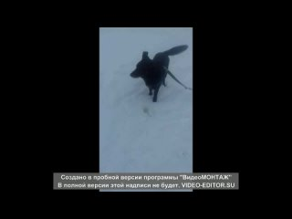Видео от Наталии Луневой