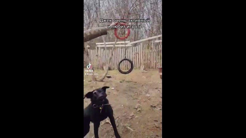Видео от Маруси Чашниковой