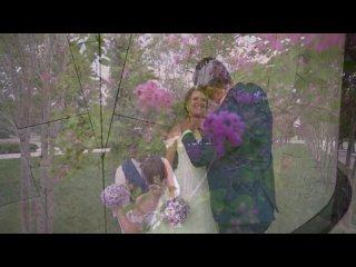 Свадебный клип Краснодар
