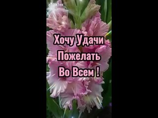 Video by Kostroma Rad