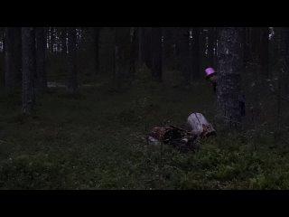 """Детский Лагерь """"Жемчужина Мологи"""" kullanıcısından video"""
