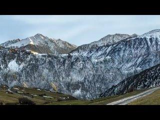 SHAMI - Моя по-любому (Lyric video, 2021) ( 480 X 854 ).mp4