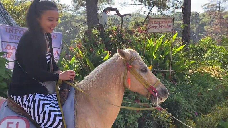 Travel Vlog Horseback