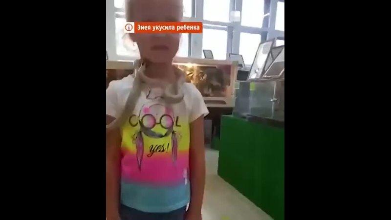 В контактном зоопаpкe Εкатepинбуpга змeя укуcила пятилeтнюю дeвочку