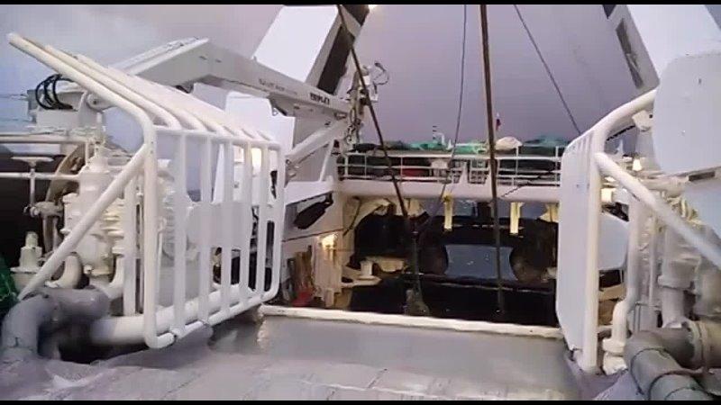 Видео от Екатерины Игнатовой