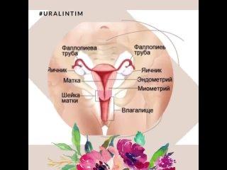 Видео от Секс Шоп КАМАСУТРА -Челябинск, Копейск Uralintim