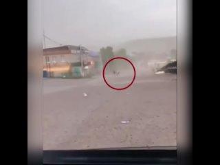 ВРЕМЯ НОВОСТЕЙ! kullanıcısından video