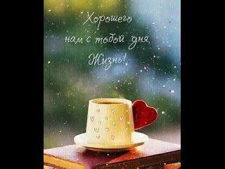 Video by Viktoria Filippova