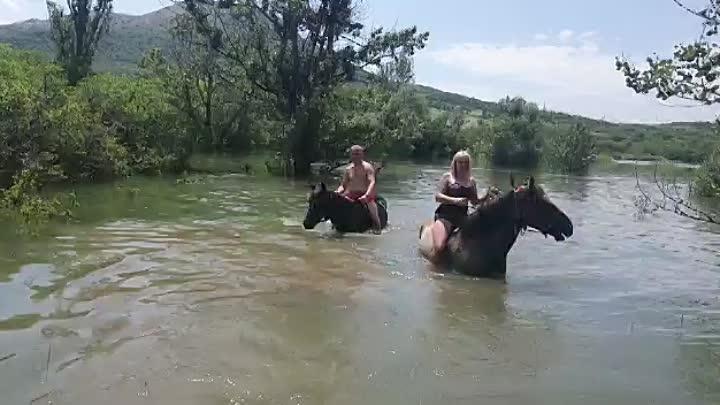 Видео от Конные прогулки в Крыму (Перевальное)