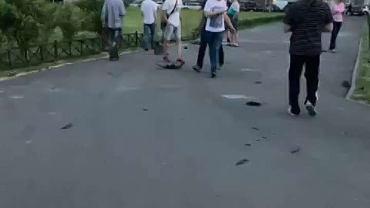 А как вам такое? На проспекте Маршака, 28 Audi кружила по газону, а потом на скорости пробила забор....
