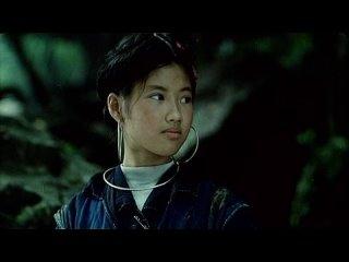 The Deserted Valley / Thung lung hoang vang (2001) dir. Pham Nhue Giang