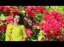 Видео от Лары Закариной