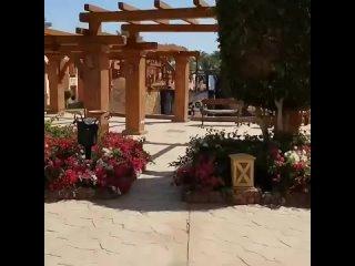 CHARMILLION GARDENS AQUA PARK 5* - Египет, Шарм-эль-Шейх