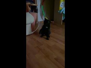 Видео от Анастасии Новак