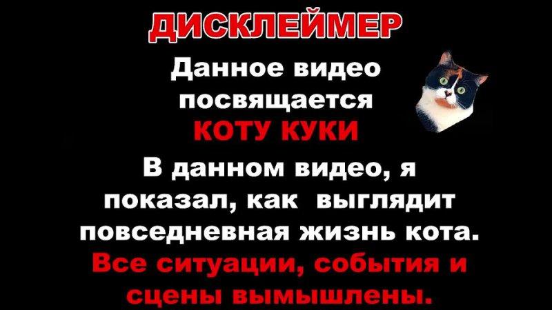 Паша Лям КОРОЧЕ ГОВОРЯ Я КУКИ КОТ ИЗ СЛИВКИ ШОУ От первого лица