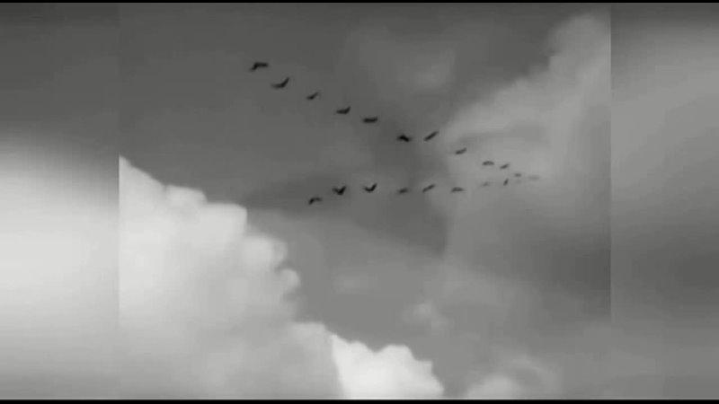 Песня До свидания мальчики в исполнении Ирины Лепшеевой и Сергея Казакова