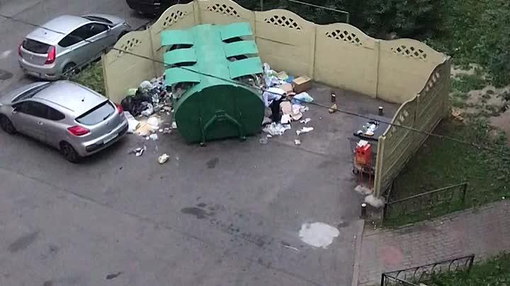 В одном из дворах Московского района мужчина вырыл всю мусорку, и раскидал мусор вокруг. До этого бы...