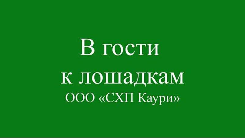 Видео от Ульяны Шудеговой
