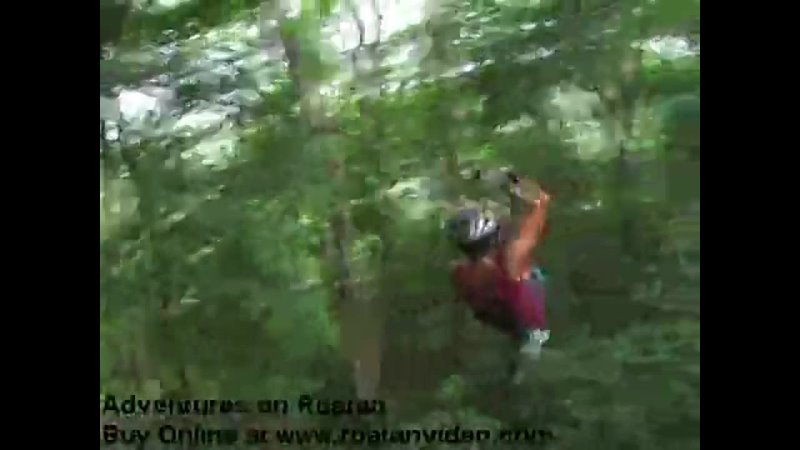 Roatan Canopy Tour Honduras
