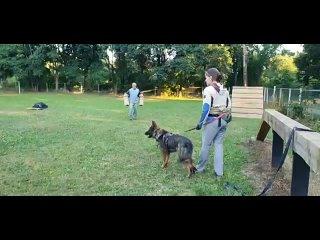 Видео от Татьяны Марковой