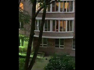 Видео от Я Люблю Васильевский