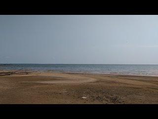 Видео от Данилы Виноградова