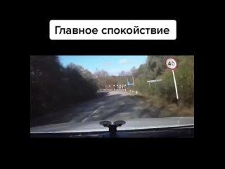 Vídeo de Дуревыбивалка