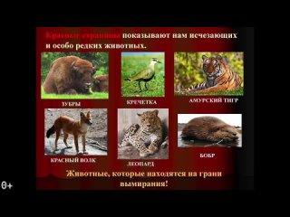 Видео от ДВИЖЕНИЕ ЗООЗАЩИТНИКОВ И ЗООВОЛОНТЕРОВ РОССИИ