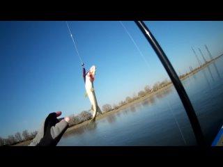 Video by Клуб рыбаков - Альпийская Деревня