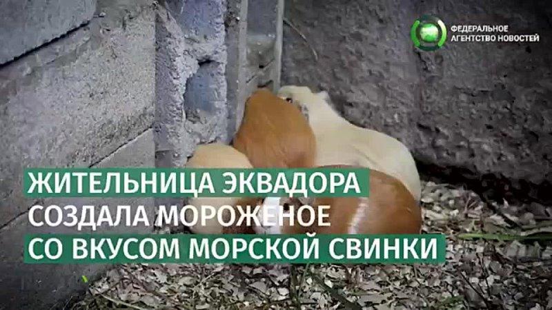 Видео от Вечерняя Филейка