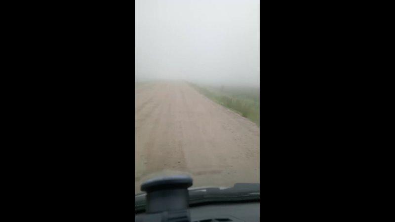 Видео от Владислава Дубровского
