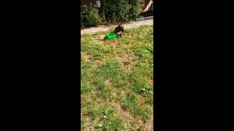 Видео от Маши Машок