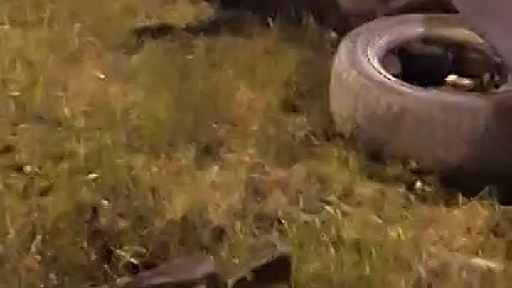 Mercedes влетел в щит с ценами на бензин Роснефть на Большевиков Столкнулись Поло и Mercedes. В Мер...