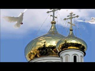 Video von Центральная районная библиотека ст. Северская