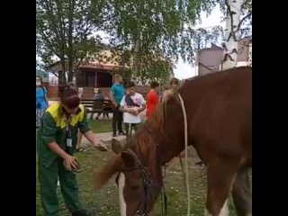 Видео от Ярославский зоопарк / Yaroslavl zoo ©