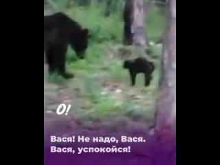Видео от Я люблю Сургут