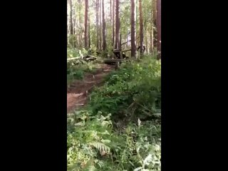 Video by MTB, and all RACING