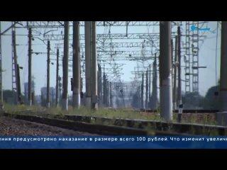 Петербургский комитет потранспорту предложил увеличить штрафы для зацеперов в50раз